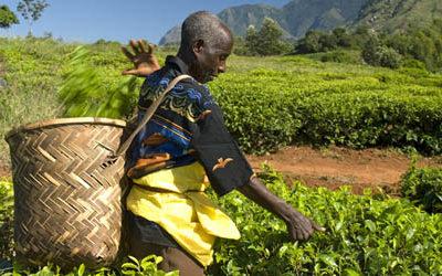 Dec. 10th: Fair Trade Fair @ OHLC